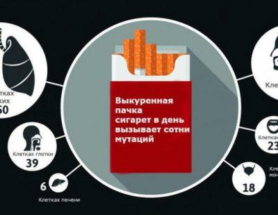 Сколько мутаций в лёгких курильщика?